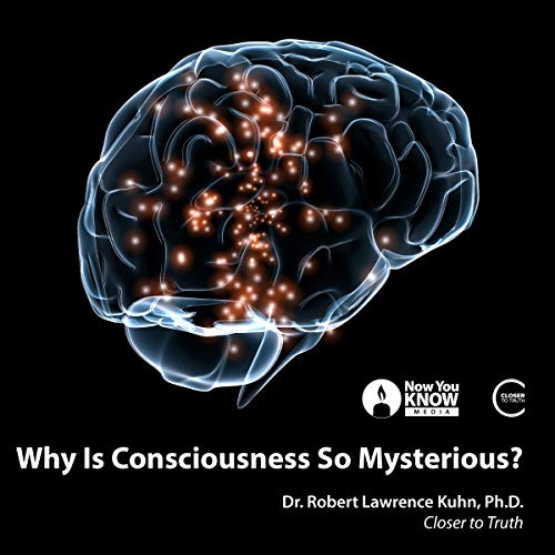 Why Is Consciousness so Mysterious? audiobook cover art