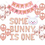 Geloar Some Bunny Is One First Birthday Party Supplies, Some Bunny is One Balloons Happy Birthday Banner for Spring Easter Rabbit Themed Baby Girls 1st Bday Baby Shower Decorations Set of 28 PCS