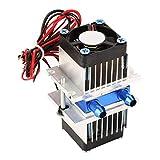 Refrigeración de semiconductores, dispositivo de refrigeración por agua de refrigeración Peltier semiconductor termoeléctrico DIY (120W)(120W)