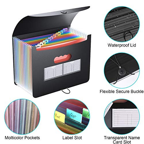 Accordian File Organizer/Expanding File Folder,Rainbow Portable/Desktop A4 Letter Size Filing Box,13-Pocket Plastic Accordion Bill Paper Document Organizer Wallet Briefcase,2 Colored A to Z/A-Z Tabs Photo #7