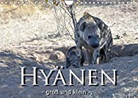 Hyaenen - gross und klein (Wandkalender 2022 DIN A4 quer): Hyaenen und Ihr Nachwuchs in der freien Wildnis Afrikas (Monatskalender, 14 Seiten )