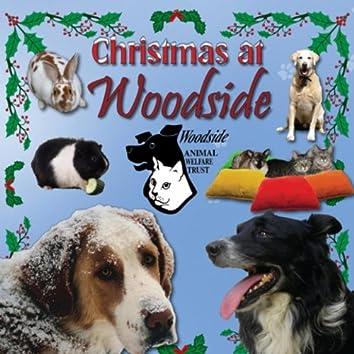 Christmas at Woodside - Single
