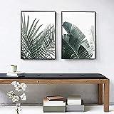 Hermosa imagen moderna planta de hoja de palma monstera nór