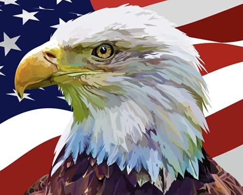 ESHUJIA Pintura digital para adultos patriótica, águila americana, pintura acrílica para decoración de la pared del hogar, kit digital (13077, 50,8 x 60,9 cm, sin marco)