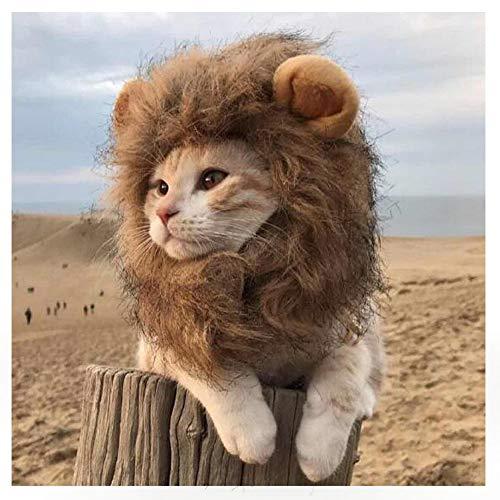 EONAZE Regolabile Costume da Criniera Leone per Gatto, Parrucca di Leone per Animale Halloween Carnevale Party Animale Autunno Inverno Vestire Costume Vestiti per Cani e Gatti (Collo: 28cm, S)
