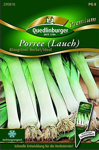 Porree Blaugrüner Herbst/Ideal - Allium porrum QLB Premium Saatgut Zwiebel und LauchZwiebel und Lauch