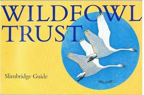 Wildfowl Trust Slimbridge Guide