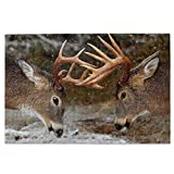 """1000 Pieces Whitetail Deer Fighting Jigsaw Puzzle,Fun Educational Toy For Kids Ages 12,Teens,Adults & Families.Educational Games Home Decoration Puzzle,Size 29.5"""" X 19.7"""""""