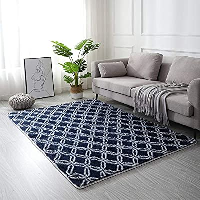 HEBE Soft Area Rugs for Bedroom Living Room Sha...
