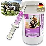 Magnesio en polvo para caballos I Calma más vitamina E selenio I calmante I 1 pasta de refuerzo vitamina B12 L triptófano I para los nervios I para la ansiedad estrés caballo nervioso I 1 kg + 1*30ml
