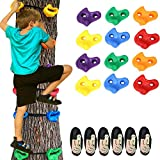 Ninja Tree Climbing Holds for Kids and Adults, 12 Climbing Rocks + 6 Ratchet Straps, Outdoor Ninja Warrior Obstacle Course Training Equipment