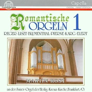 Romantische Orgeln Vol. 1