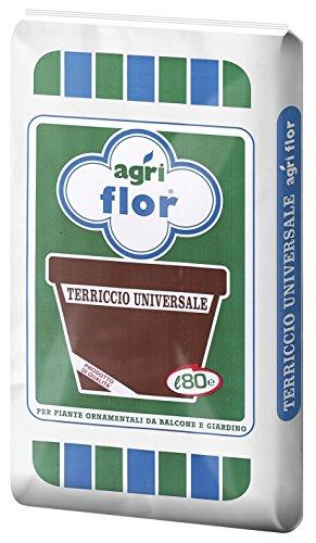 1 CF Di TERRICCIO UNIVERSALE LT. 80