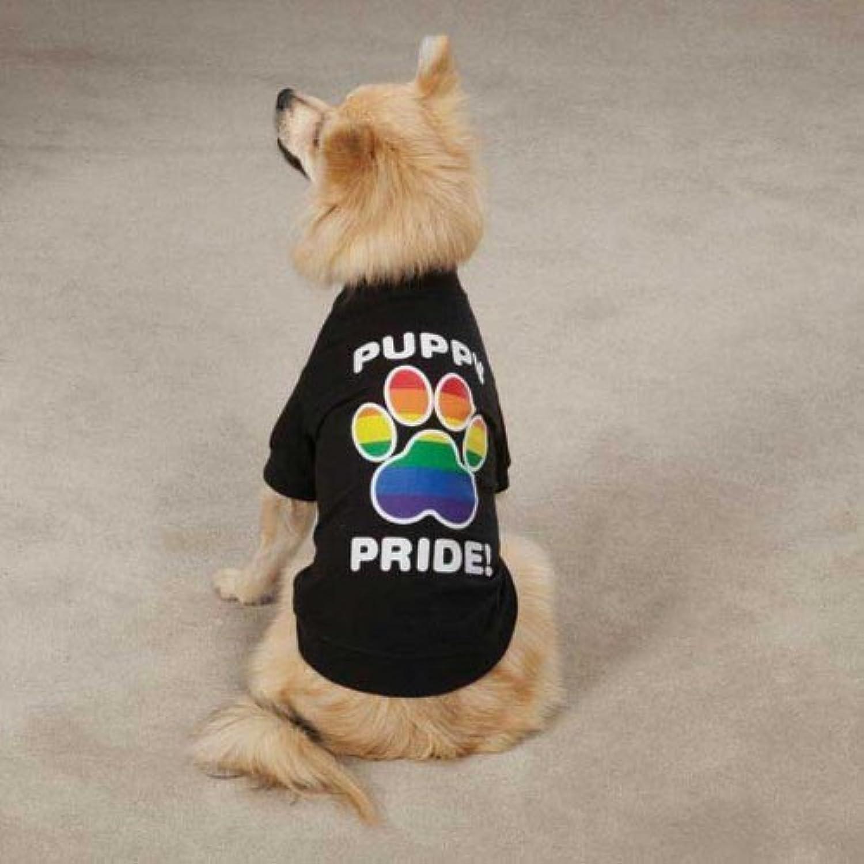 Entrega gratuita y rápida disponible. Casual Canine zm3041417Puppy Pride Tee for Dogs, Dogs, Dogs, Small Medium, negro by Casual Canine  ventas en linea