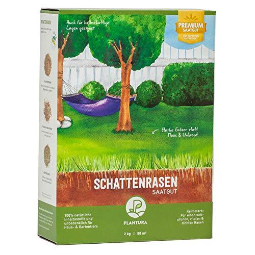 Plantura Rasensaaten für Schatten-, Trocken, Spiel-& Sportrasen sowie zur Reparatur und Nachsaat (Schattenrasen, 2 kg)
