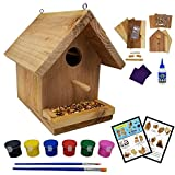 SparkJump Jr Birdhouse Kit | Cedar Wood for Outdoors | with Paint Set | Bird Feeder | DIY Crafts Woodworking Building Gardening Project for Kids, Adults, Family