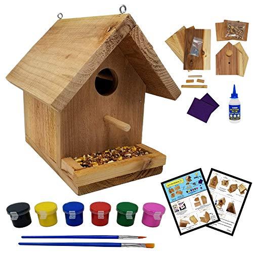 SparkJump Jr Birdhouse Kit with Paint Set – Cedar Wood for Outdoors – DIY...