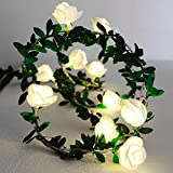 Kitstar 10LEDs Flower Green Leaf Rattan Timer String Light Warm White Wedding Party Christmas Holiday Patio Decoration 5ft, UL588 Approved