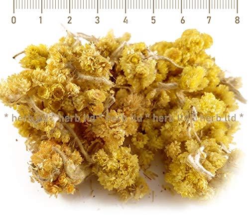 Sand-Strohblume, Helichrysum Arenarium L. Moench., Kräuter Blüten