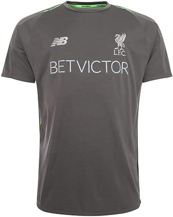 0c10bcf085e Liverpool FC Mens Grey Training Short Sleeve Jersey 18 19 LFC Official
