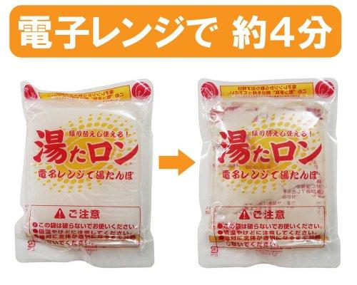 アイスジャパン『湯たロン』