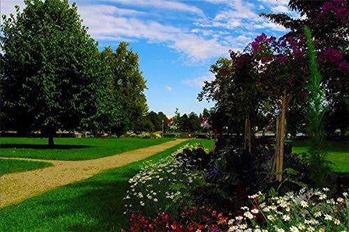 1000 Piezas De Rompecabezas Para Adultos Parque Flores Pasarela Árboles Montaje De Madera Decoración Para El Hogar Juego De Juguetes Juguete Educativo Para Niños Y Adultos Regalos