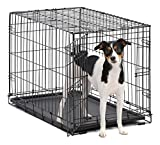 Dog Crate | MidWest ICrate 30 Inch Folding Metal Dog Crate w/ Divider Panel,| Medium Dog, Black