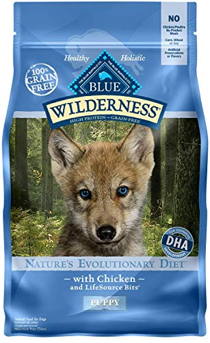 Blue Buffalo Wilderness High Protein Dry Puppy Food