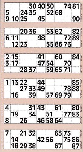 Bingosupermarket Lot de 6 planches et 600 tickets géants de bingo