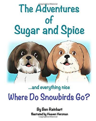 Where do Snowbirds go? (Adventures of Sugar and Spice, Band 1)