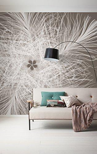 Komar - fleece fotobehang veren sterren - 300 x 250 cm - behang, muur decoratie, ster, droom, kunst, veren - 006-DV3