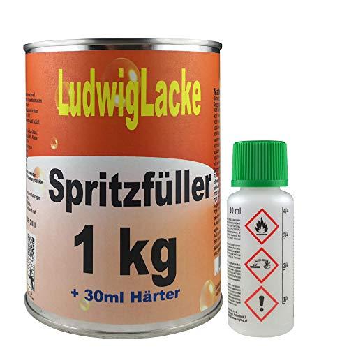 Grundierung 1 kg Spritzfüller für Autolack Lackierer für Lackierpistole