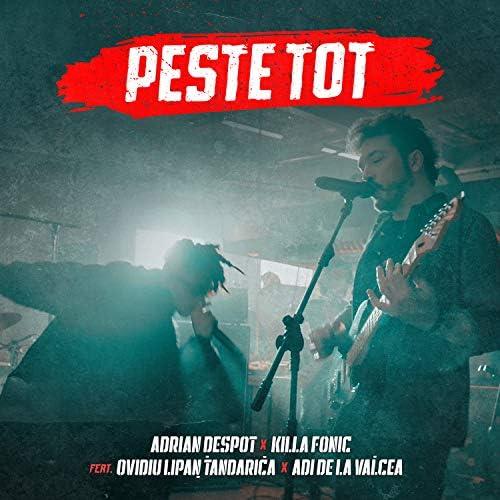 Adrian Despot & Killa Fonic feat. Ovidiu Lipan Tandarica & Adi De La Valcea