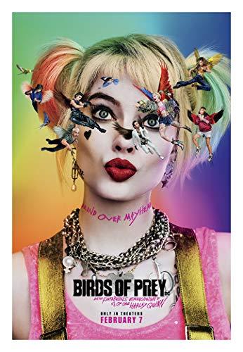 51IkzuaPOKL Harley Quinn Birds of Prey Posters