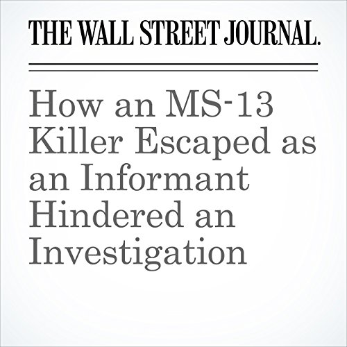 How an MS-13 Killer Escaped as an Informant Hindered an Investigation copertina