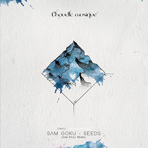 Seeds (Sam Pauli Remix)