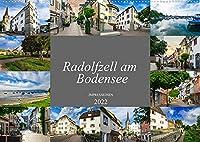 Radolfzell am Bodensee - Impressionen (Wandkalender 2022 DIN A2 quer): Ein wunderschoener Bilderkalender der Stadt Radolfzell am Bodensee (Monatskalender, 14 Seiten )