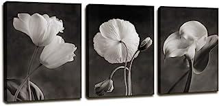 Amazon Com Black And White Canvas Art