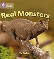 Real Monsters (Collins Big Cat Phonics)