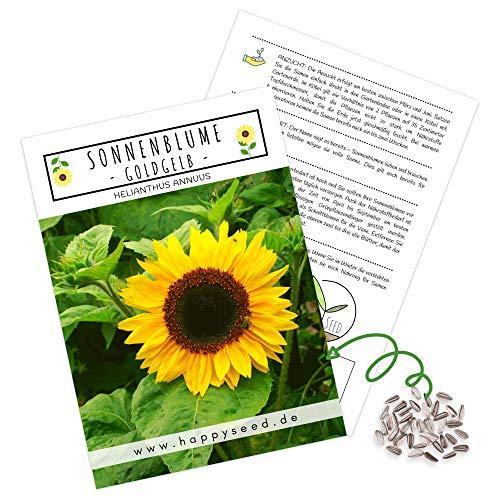 Farbenfrohe Sonnenblumen Samen mit hoher Keimrate - Blumensamen für einen bunten & bienenfreundlichen Garten (1x Goldgelb)