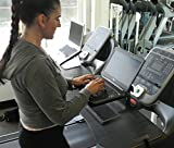Dr. McBabe's Treadmill