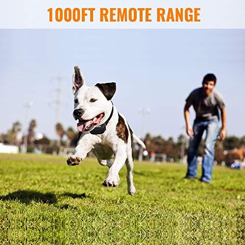 Petrainer PET998DRU Dog Training Collar