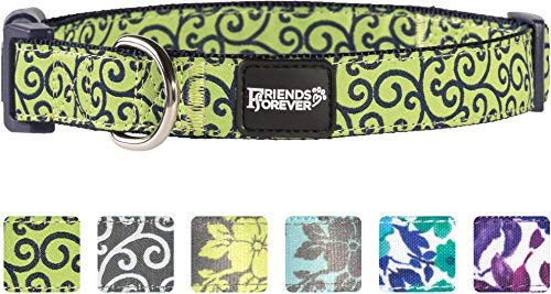 Friends Forever Dog Collar for Dogs, Fashion Floral Pattern Cute Puppy Collar, Green Small 11-16'