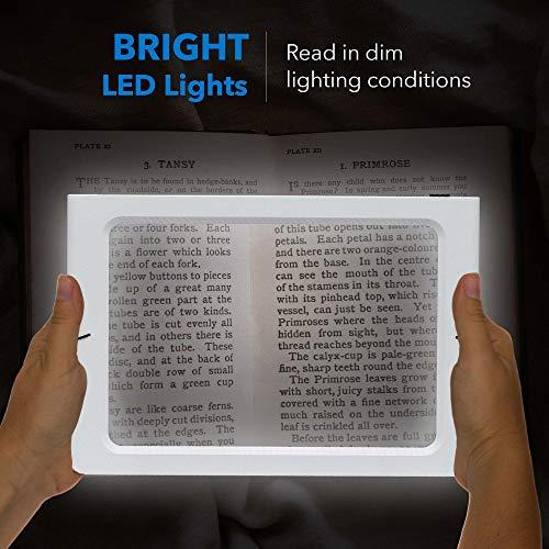 Fancii 2x große Leselupe mit LED Licht, A4 Vollbild Lupe für die Nutzung mit Handgriff, freihändig, mit Ständer oder Halsschlaufe – Lesehilfe für Senioren und zum Lesen, USB- und Batteriebetrieb - 4