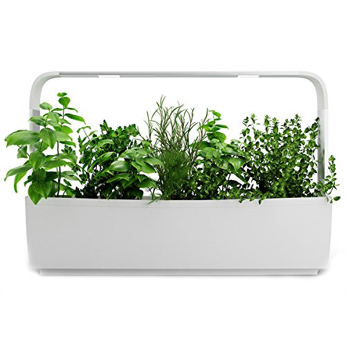 Tregren LED Huerto, Blanco, T12 : 12 plantes