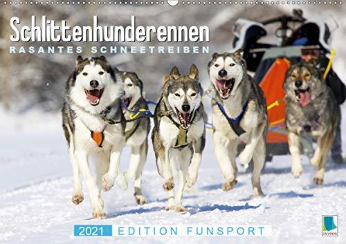Schlittenhunderennen: Rasantes Schneetreiben - Edition Funsport (Wandkalender 2021 DIN A2 quer)