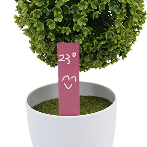 SM SunniMix 100 STK Pflanzenschilder Pflanzenstecker Stecketiketten für Pflanzen Etiketten - Pink