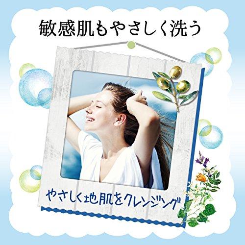 シャンプー[シトラスサボンの香り]480ml【地肌すっきり】ダイアンボタニカルリフレッシュ&モイスト