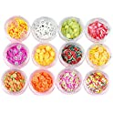 12-Pack Weiki 3D Nail Art Slice Fruit Slime Making Supply