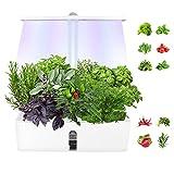 MATHOWAL Sistema di Coltivazione idroponica con Luce Crescente a LED, Giardino di Erbe aromatiche per Interni Regolabile in Altezza, fioriera da Giardino Intelligente per Cucina Domestica